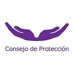 Reunión del Consejo Pastoral para la Protección de Menores y Adultos Vulnerables Evaluación del año 2020 y proyección para el año 2021