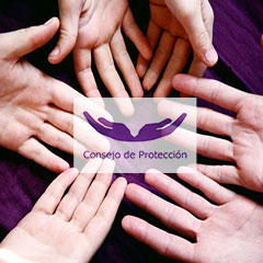 Reunión del Consejo Pastoral para la Protección de Menores y Adultos Vulnerables Comienzo y proyección para el año 2021